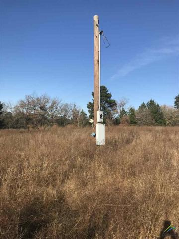 19732 Cr 366, Winona, TX 75792 (MLS #10103149) :: RE/MAX Impact