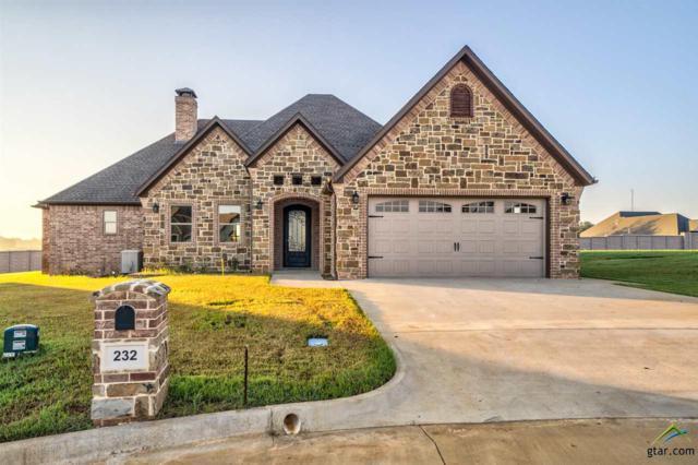 232 Providence Place, Bullard, TX 75757 (MLS #10103232) :: RE/MAX Professionals - The Burks Team