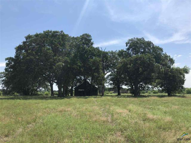 TBD County Line Road 1018, Saltillo, TX 75478 (MLS #10103272) :: The Wampler Wolf Team