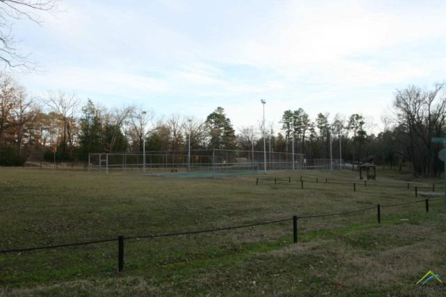 000 High Point Trail, Mt Vernon, TX 75457 (MLS #10103373) :: The Wampler Wolf Team