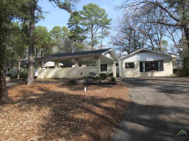 481 E Holly Trail, Holly Lake Ranch, TX 75765 (MLS #10103568) :: The Wampler Wolf Team