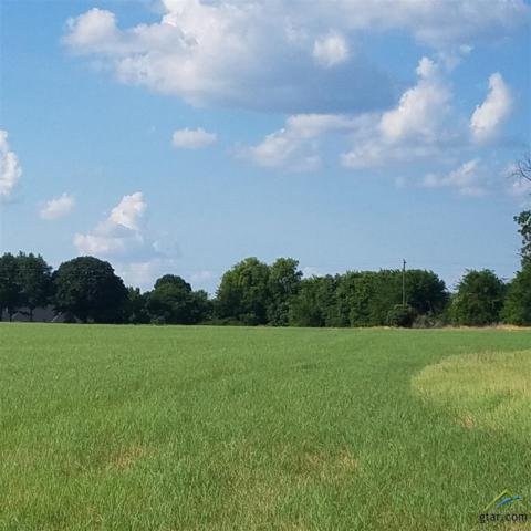 Tract 3 Fm 849, Lindale, TX 75771 (MLS #10103655) :: RE/MAX Impact