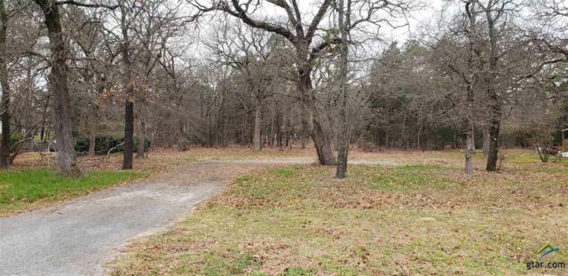 17217 Countrywood (Cr 4188), Lindale, TX 75771 (MLS #10103677) :: RE/MAX Impact