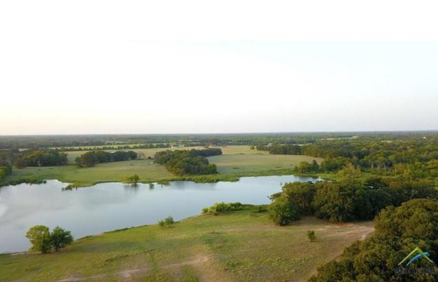 0000 County Road 1131, Cumby, TX 75433 (MLS #10103680) :: The Wampler Wolf Team