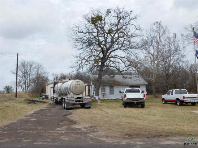 571 County Road 3114, Quitman, TX 75783 (MLS #10103683) :: RE/MAX Professionals - The Burks Team