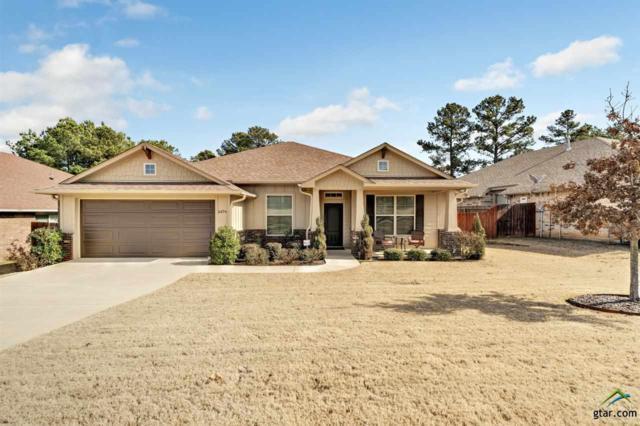 6674 Lacebark Circle, Tyler, TX 75703 (MLS #10103753) :: RE/MAX Impact