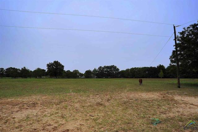 000 Cr 452 Lots 8 A-E, Lindale, TX 75771 (MLS #10103778) :: RE/MAX Professionals - The Burks Team