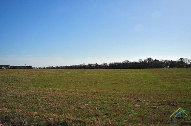 TBD Cr 4122 Lot 3, Lindale, TX 75771 (MLS #10103780) :: The Wampler Wolf Team