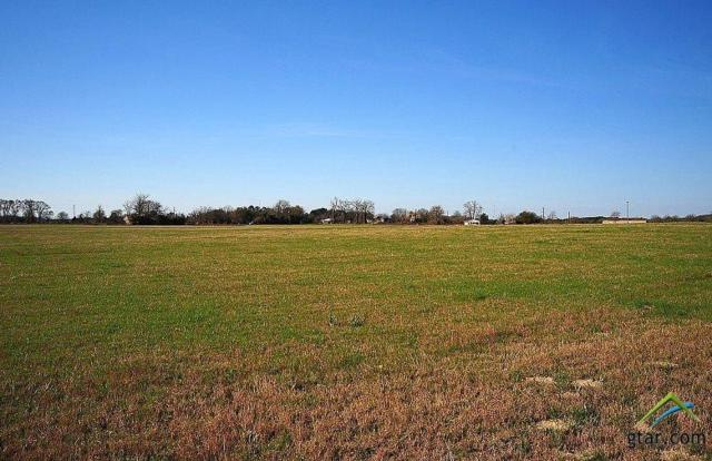 TBD Cr 452 Lot 2, Lindale, TX 75771 (MLS #10103786) :: RE/MAX Professionals - The Burks Team
