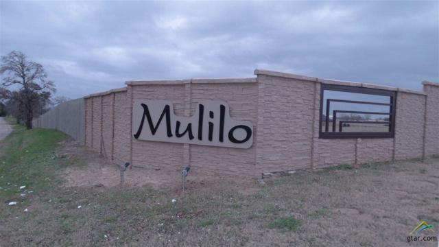 509 Bush Buck Way, Bullard, TX 75757 (MLS #10103992) :: RE/MAX Professionals - The Burks Team