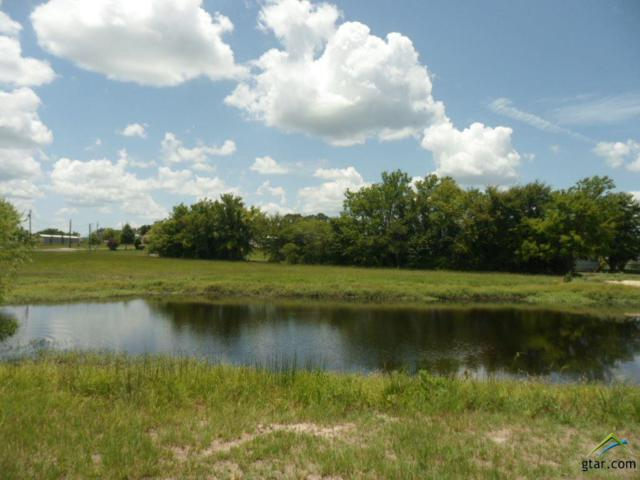 Lot 159 White Dove, Quitman, TX 75783 (MLS #10104200) :: The Wampler Wolf Team