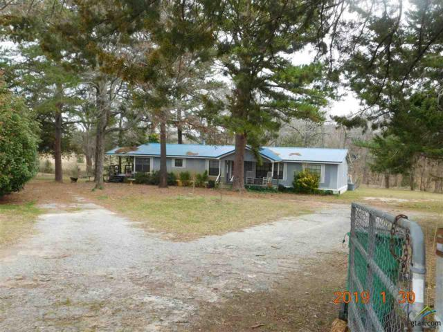 10948 County Road 337, Tyler, TX 75708 (MLS #10104213) :: The Wampler Wolf Team