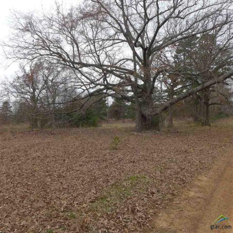 TBD Clydesdale Ct. Lt 12, Blk 2, Gilmer, TX 75644 (MLS #10104299) :: The Wampler Wolf Team