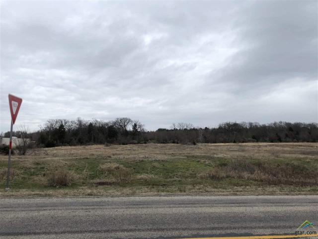 TBD Hwy 37, Mt Vernon, TX 75457 (MLS #10104304) :: The Wampler Wolf Team