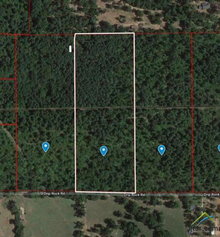 TBD Drip Rock Rd., Jacksonville, TX 75766 (MLS #10104632) :: The Wampler Wolf Team