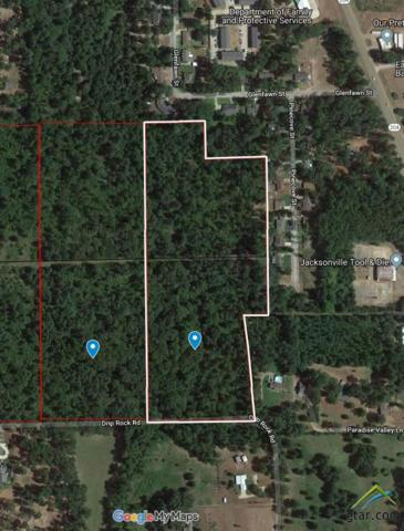 TBD Drip Rock Rd., Jacksonville, TX 75766 (MLS #10104636) :: The Wampler Wolf Team