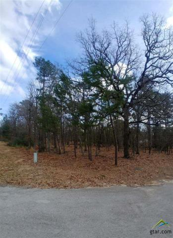 Sec 2 Lot 220 High Hill/Blue Bird, Holly Lake Ranch, TX 75765 (MLS #10104986) :: RE/MAX Professionals - The Burks Team