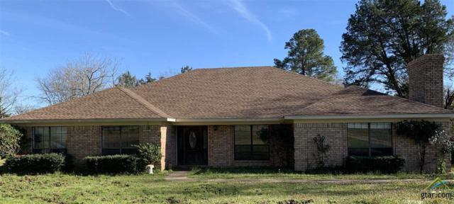 20326 Hwy 271, Gladewater, TX 75647 (MLS #10105080) :: The Wampler Wolf Team