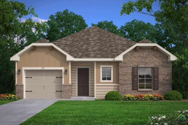201 Valley View Lane, Jacksonville, TX 75766 (MLS #10105255) :: RE/MAX Professionals - The Burks Team