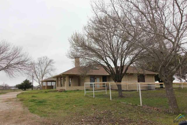 10895 Co Rd 212, Forney, TX 75126 (MLS #10105260) :: The Wampler Wolf Team