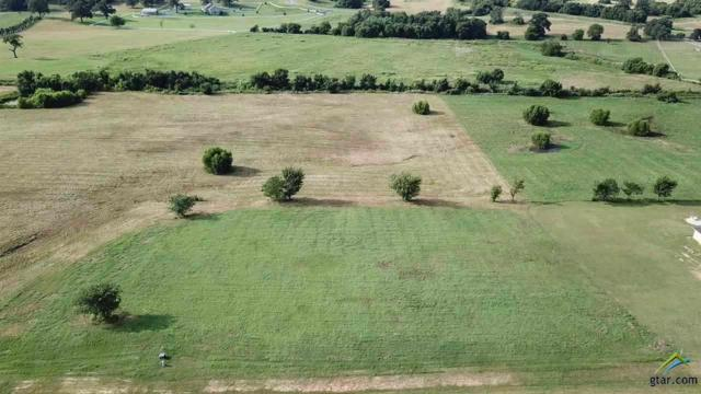 Lot 355 Grandview, Athens, TX 75752 (MLS #10105281) :: RE/MAX Impact