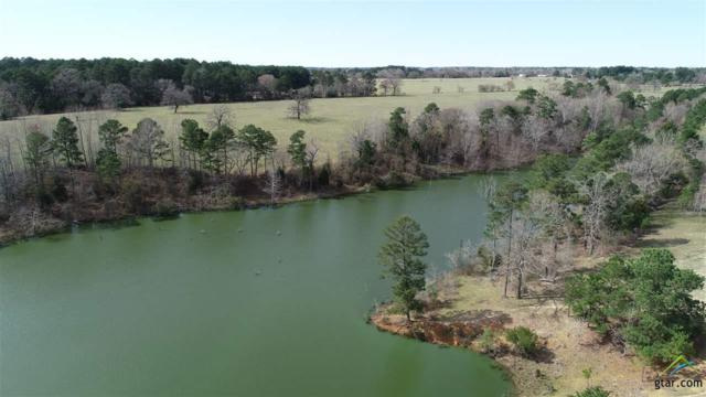 2823 An County Rd 318, Frankston, TX 75763 (MLS #10105319) :: The Wampler Wolf Team