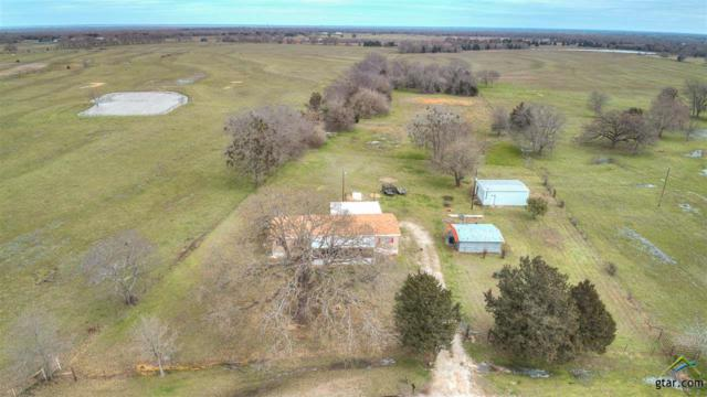 3700 Vz County Road 3504, Wills Point, TX 75169 (MLS #10105587) :: The Wampler Wolf Team