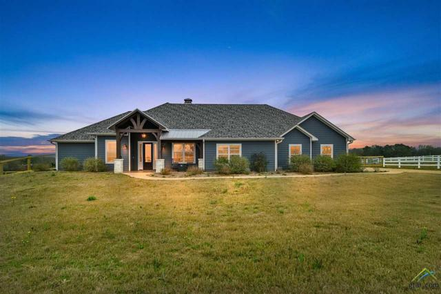 6870 Shore Crest Way, Athens, TX 75751 (MLS #10105598) :: The Wampler Wolf Team