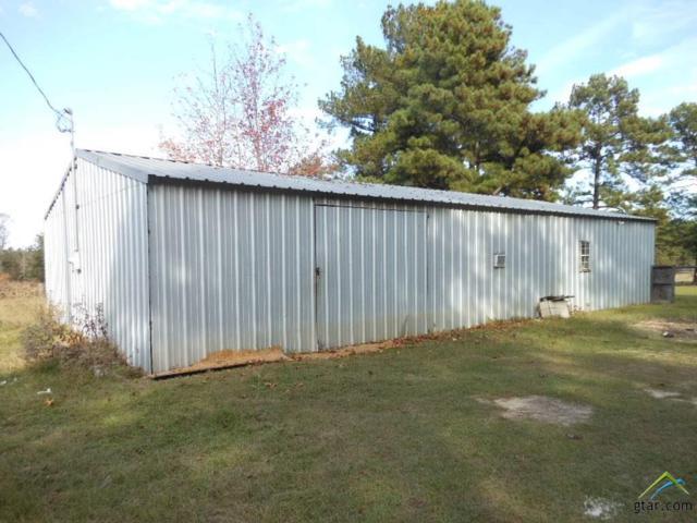 TBD Meadowbrook, Linden, TX 75563 (MLS #10105632) :: The Wampler Wolf Team