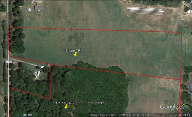 Tract 1 Cr 2382, Mineola, TX 75773 (MLS #10105906) :: RE/MAX Impact