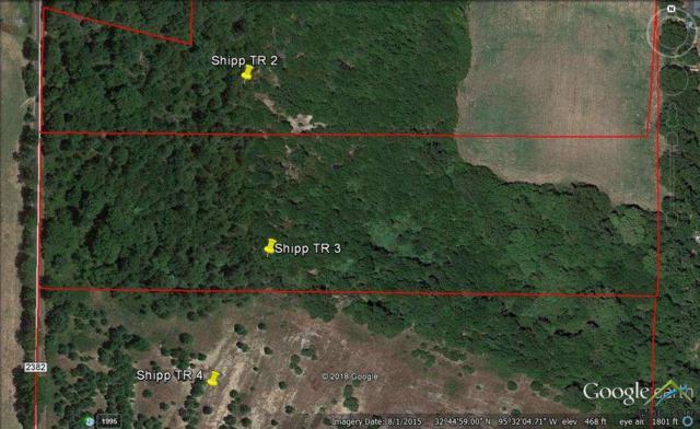 Tract 3 Cr 2382, Mineola, TX 75773 (MLS #10105908) :: RE/MAX Impact