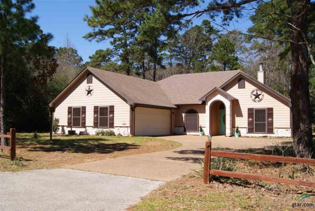 278 Green Meadow Trail, Holly Lake Ranch, TX 75765 (MLS #10105940) :: The Wampler Wolf Team