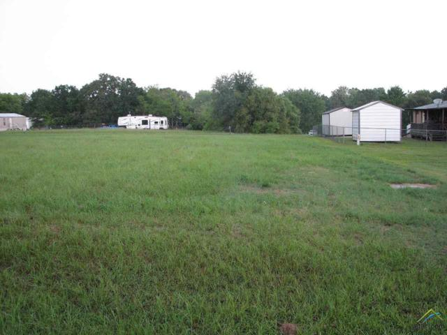000 Holiday Village Drive, Quitman, TX 75783 (MLS #10105953) :: The Wampler Wolf Team