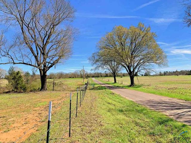 Cr 1780 Meadow Oaks Ranch Tract 2, Mt Pleasant, TX 75455 (MLS #10105989) :: RE/MAX Impact