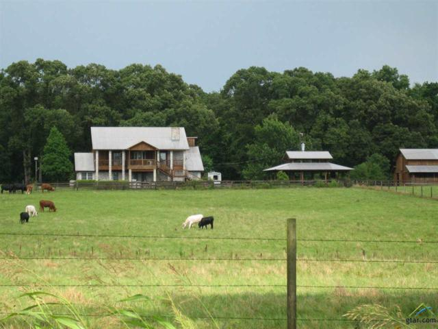 13436 State Hwy 19 North, Athens, TX 75752 (MLS #10106030) :: The Wampler Wolf Team