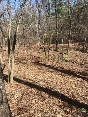 00 County Road 4104, Lindale, TX 75771 (MLS #10106062) :: The Wampler Wolf Team