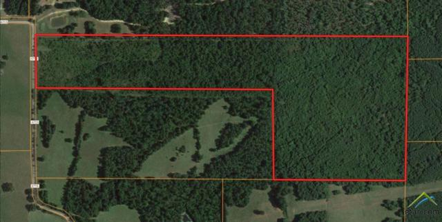 TBD Cr 4715, Troup, TX 75789 (MLS #10106079) :: The Wampler Wolf Team