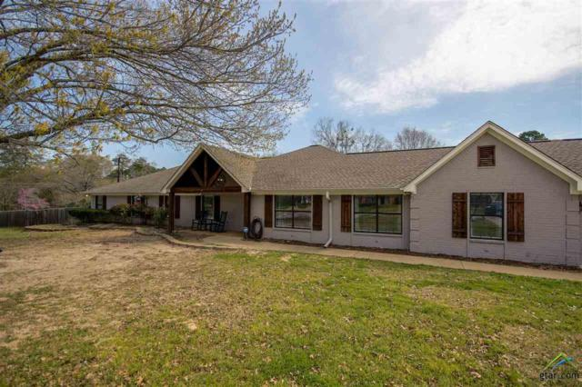17989 Cr 1275, Tyler, TX 75703 (MLS #10106082) :: The Wampler Wolf Team