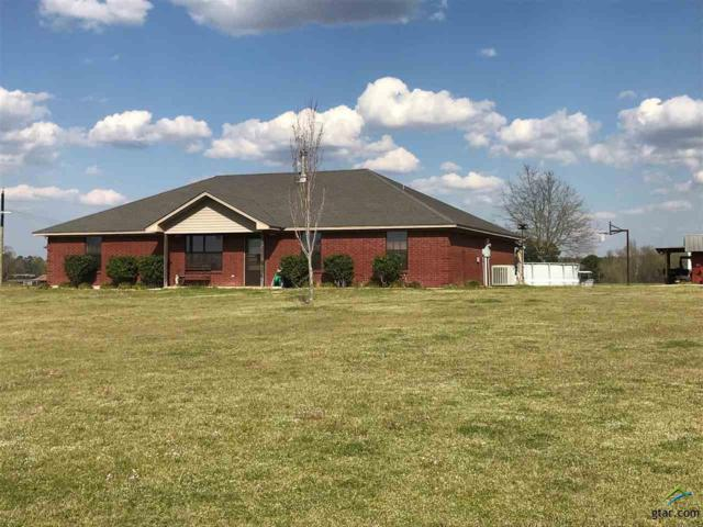 6888 County Road 2888, Naples, TX 75568 (MLS #10106083) :: The Wampler Wolf Team