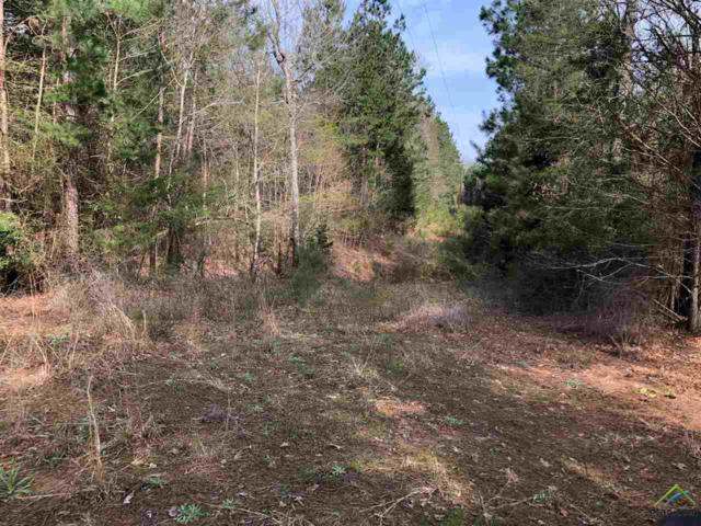 TRACT 3 Fm 235, Jacksonville, TX 75766 (MLS #10106112) :: The Wampler Wolf Team