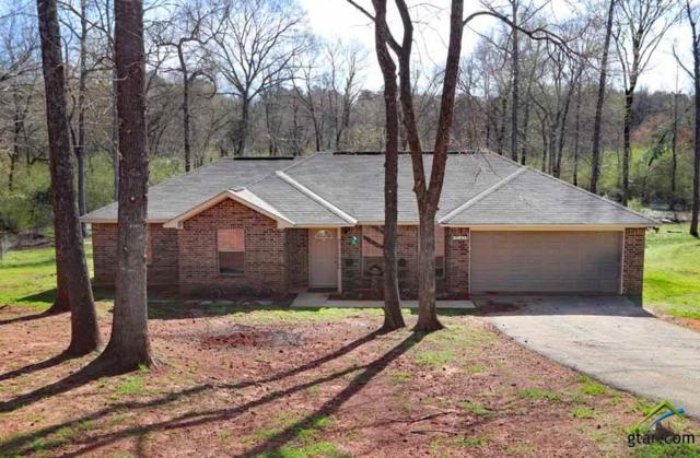 19125 Hillside Dr., Tyler, TX 75703 (MLS #10106126) :: The Wampler Wolf Team