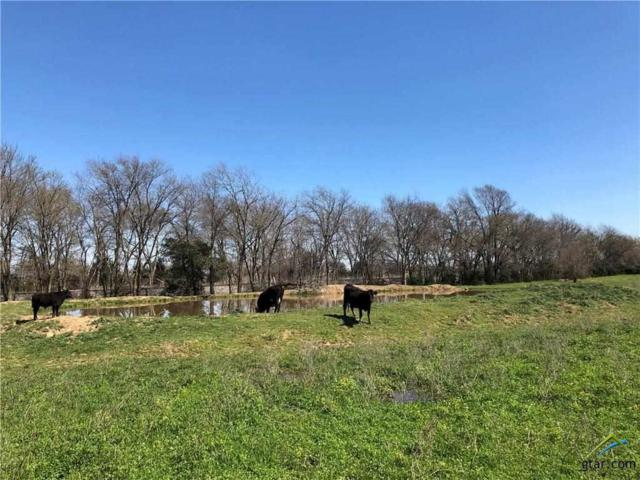 TBD W Interstate 30, Cumby, TX 75433 (MLS #10106144) :: Griffin Real Estate Group