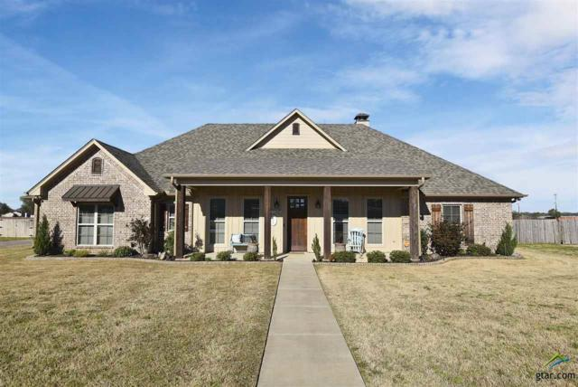 157 Babatwa Lane, Bullard, TX 75757 (MLS #10106185) :: The Wampler Wolf Team