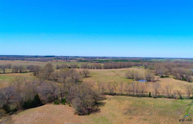 000 Cr 1070, Winfield, TX 75493 (MLS #10106262) :: The Wampler Wolf Team