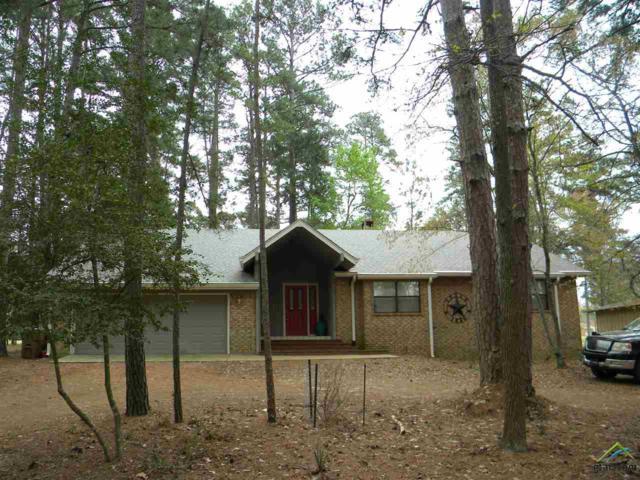 286 Greenbriar Trail, Holly Lake Ranch, TX 75765 (MLS #10106279) :: RE/MAX Professionals - The Burks Team
