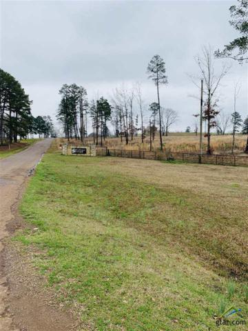 123TBD Osage, Gilmer, TX 75645 (MLS #10106285) :: The Wampler Wolf Team