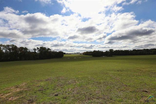 2234 Farm To Market 3042, Pittsburg, TX 75686 (MLS #10106353) :: RE/MAX Impact