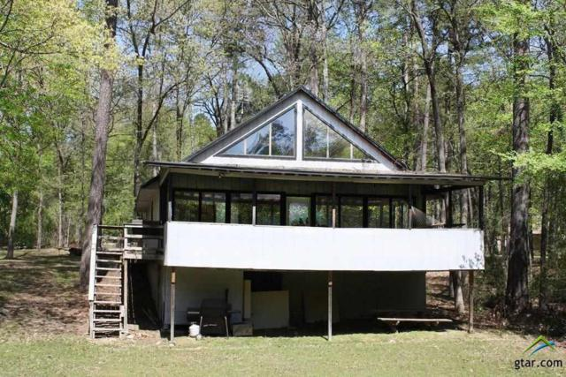58 Dogwood Trail, Mt Vernon, TX 75457 (MLS #10106726) :: RE/MAX Impact