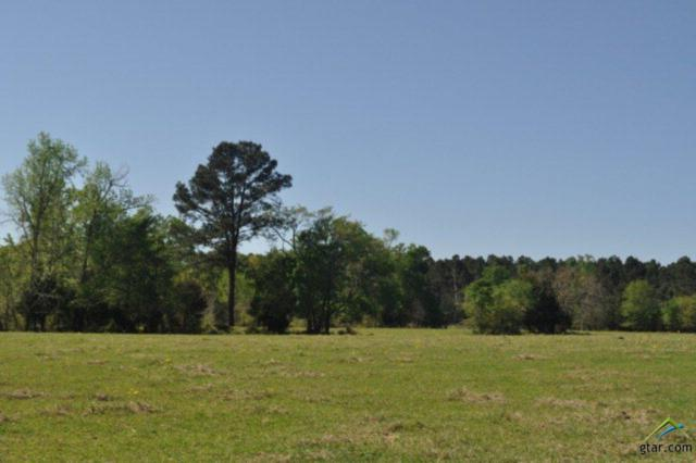 0000 Acr338, Neches, TX 75779 (MLS #10106789) :: The Wampler Wolf Team