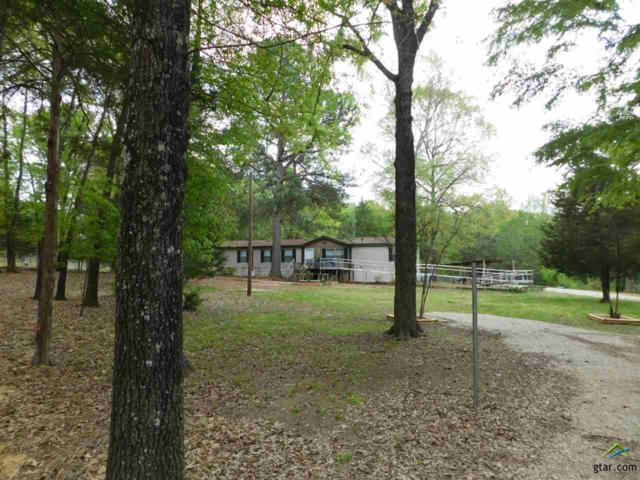 796 County Road 3226, Quitman, TX 75783 (MLS #10106817) :: The Wampler Wolf Team